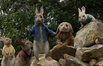 Sorties à la maison : Peter Rabbit