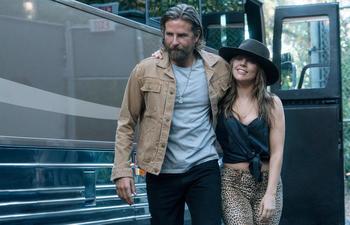 Découvrez les nominations cinéma des Golden Globes 2019