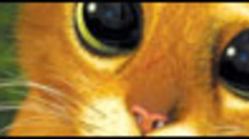 Un film pour le Chat-Potté