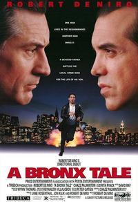 Une histoire du Bronx