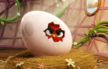 Sorties DVD : The Angry Birds Movie