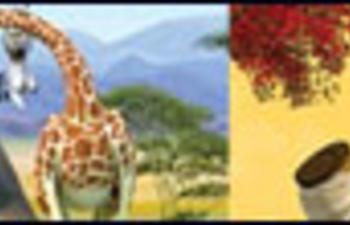 Une suite à Kung Fu Panda et un troisième Madagascar