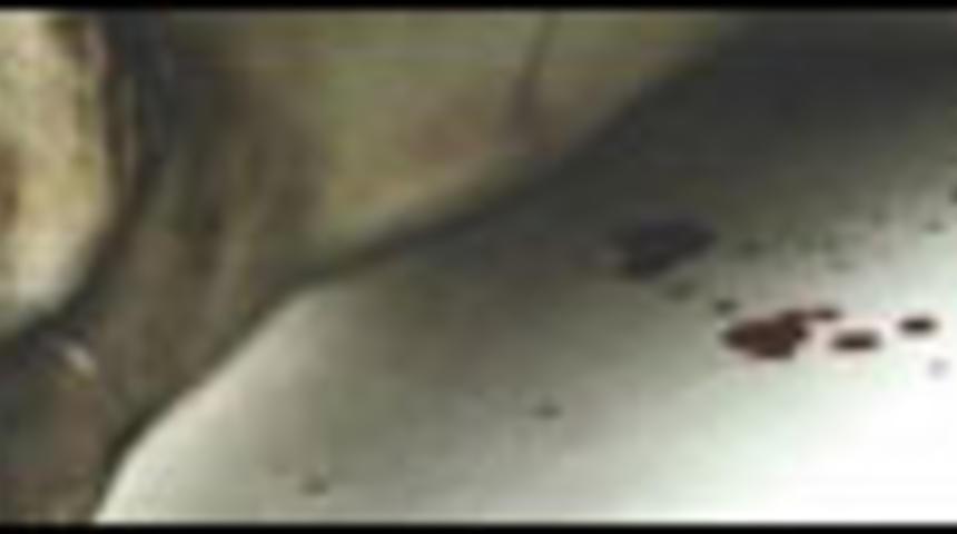 Primeur : Bande-annonce de Saw 2